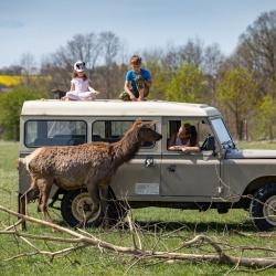 Offroad Safari   Safari Park