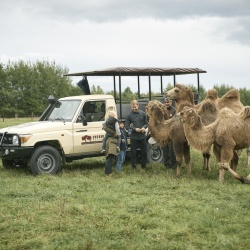 Offroad Safari | Safari Park